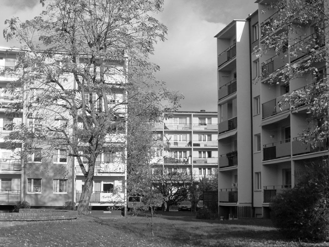 Szczecin, ul. Boryny